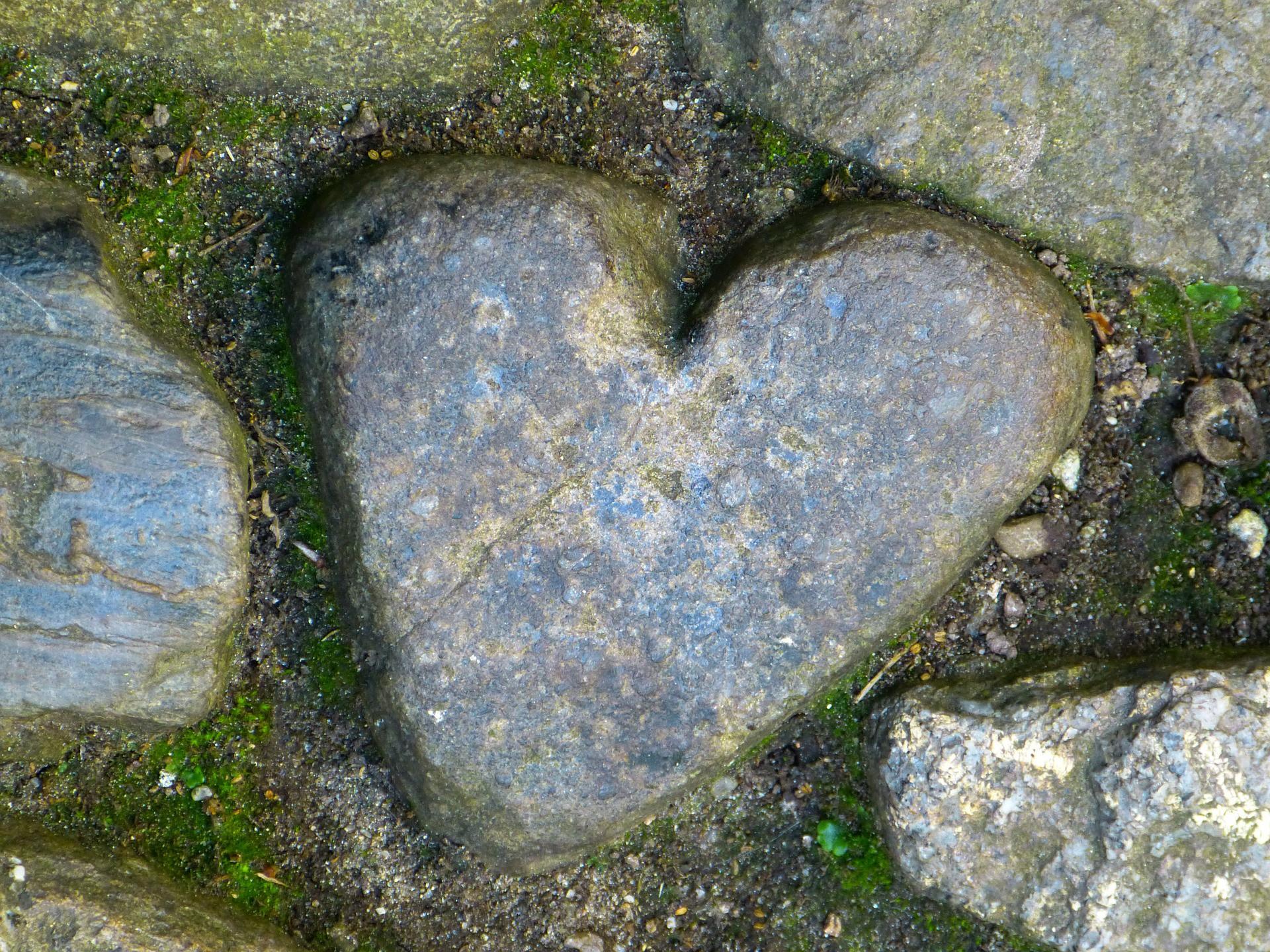 heart-510100_1920